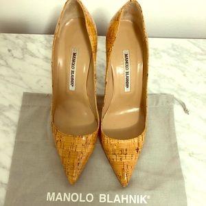Manolo Blahniks 105mm Bb Pointy Toe Pumps